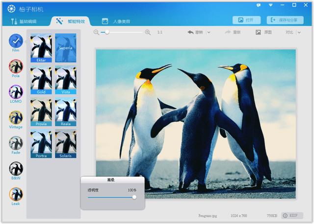 POMELO 柚子相機 PC 版:免費相片修圖軟體,輕鬆套用濾鏡、編輯圖片特效
